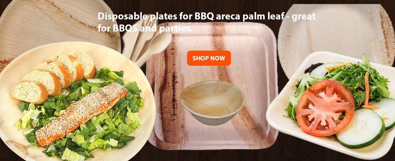 Areca Disposable Plates